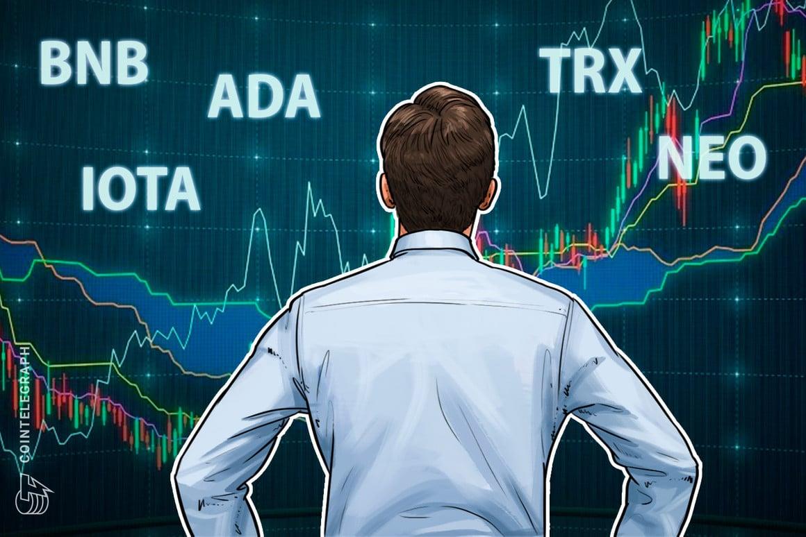 Es mucho mas interesante el trading en criptomonedas de menos de 1 USD: IOTA, CARDANO, TRON o RIPPLE