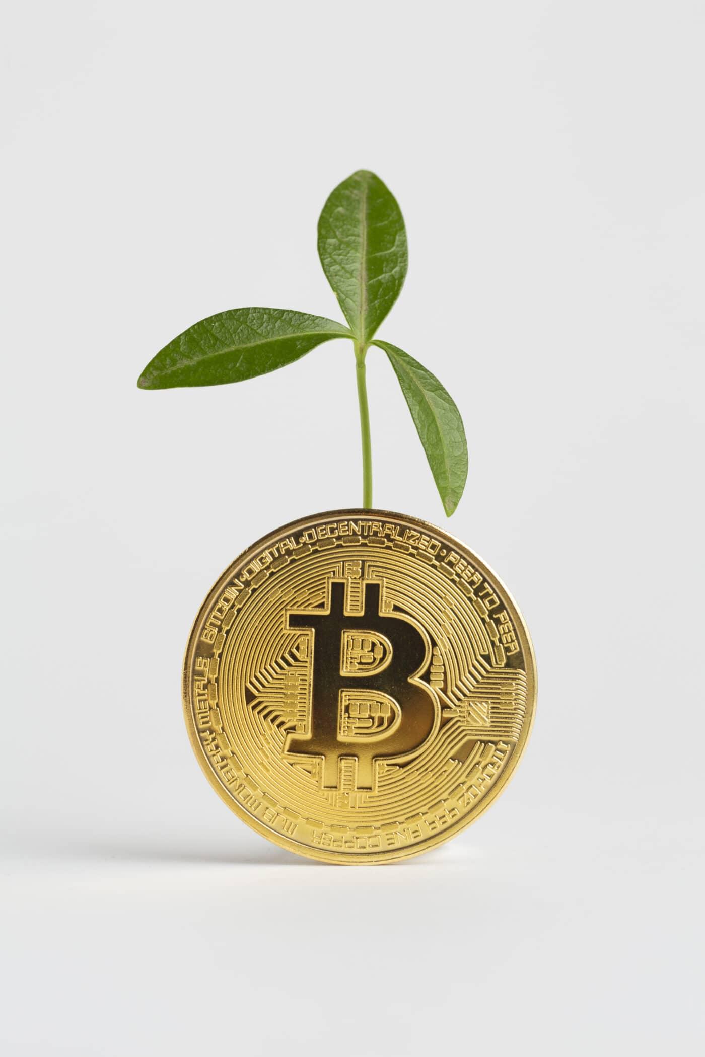 Bitcoin: ¿A horas de superar los máximos de 42000? Siguiente objetivo 50000 ¿Tether cisne negro?