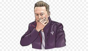 Lee más sobre el artículo Elon ha limpiado el mercado crypto, una vez mas. Las criptomonedas que importan recuperarán rápido..