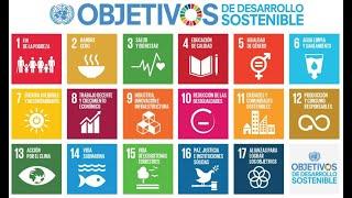 Lee más sobre el artículo Quedan 8 años para conseguir los objetivos de desarrollo sostenible: con calma que no hay prisa